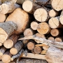 We have logs to give away for free, in the London area.